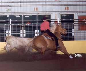 Julie on Yellar at NRCHA show