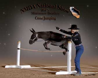2010 NMDA Nationals